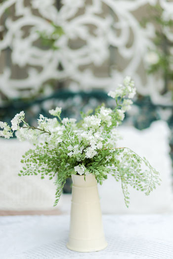 Plant Flower No People Nature Flowering Plant Freshness Focus On Foreground Day Close-up Green Color Growth Potted Plant Outdoors Table White Color Beauty In Nature Leaf Plant Part Vase Flower Arrangement Flower Head Bouquet
