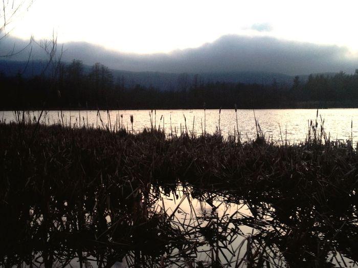 Nature Sunset Berkshires Take A Break Enjoying Life Exploring Relaxing Pond Ducks Wildlife