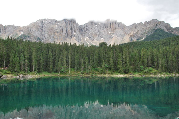 lago di carezza Lago Di Carezza Lago Di Carezza Trentino Dolomiti Beauty In Nature Dolomiti Lake Landscape Mountain Mountain Peak Reflection Scenics - Nature Tranquil Scene Tranquility Tree Water Waterfront