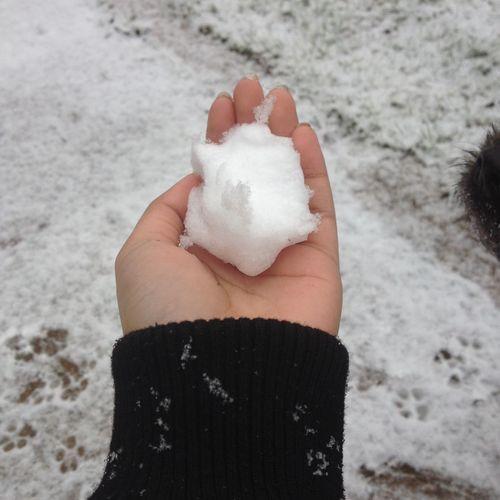 Snow ❄️⛄️