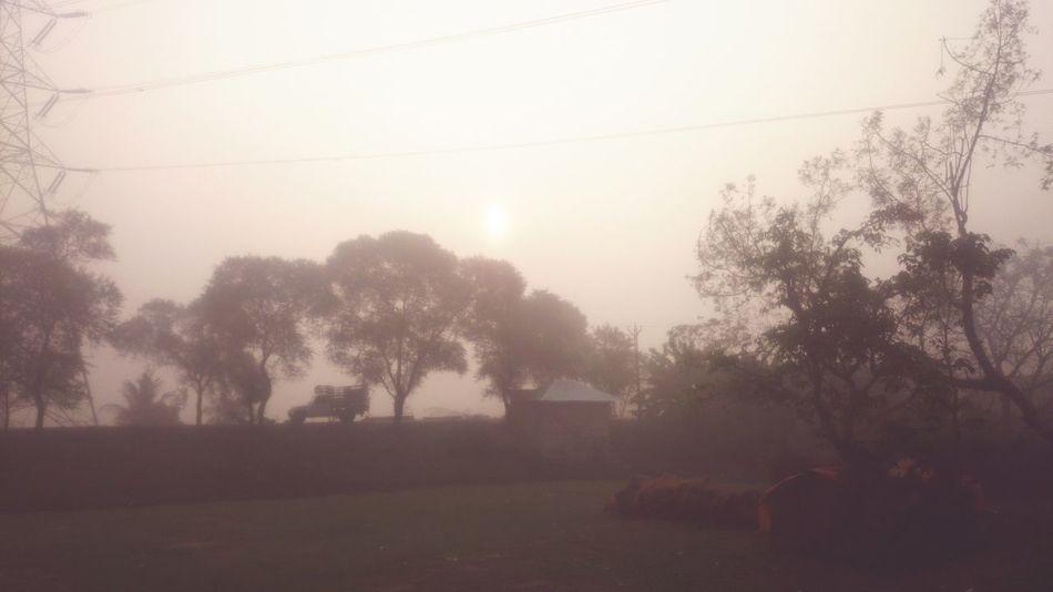 Foggy day Xperia Z1 Compact First Eyeem Photo