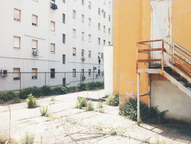 Suburbia House Architecture Yellow