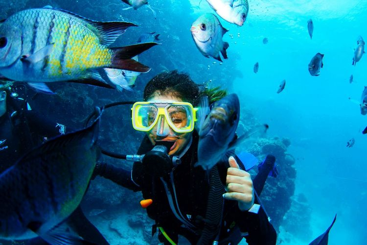 Scuba Diving in the Great Barrier Reef Loved It Dive Australia Whitsundays Trip Of A Lifetime So Happy Padi Qualified