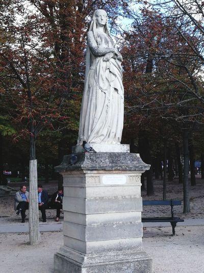 Statue Sculpture Tree Human Representation Nature France🇫🇷 France Paris, France  Paris Paris ❤ Paris, France  Sainte Genevieve Patronne De Paris Le Jardin Du Luxembourg Park