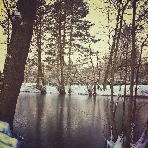 Nature Taking Photos Winter Lake