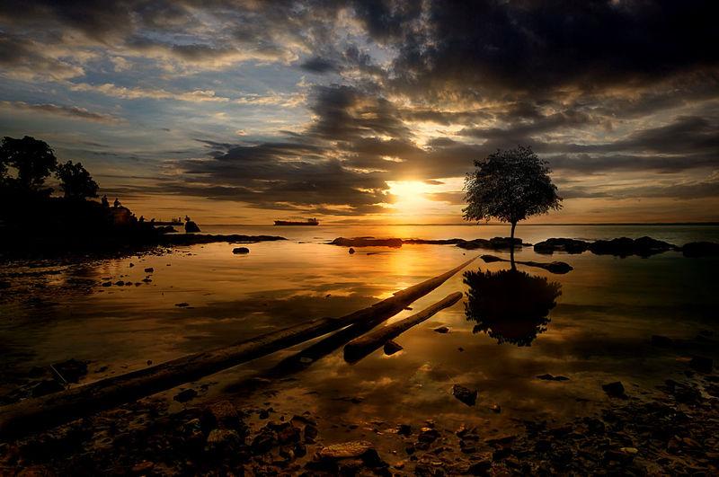Banua patra beach Sky Sunset Water Cloud - Sky Beauty In Nature Scenics - Nature Reflection Tree Tranquility Tranquil Scene Plant Nature Idyllic No People Silhouette Non-urban Scene Orange Color Lake Land Tree Tree Beach
