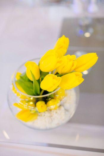 Tulips Royal Wedding flowers Freshness vase