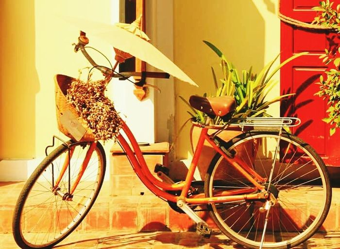 Bicycle in flower