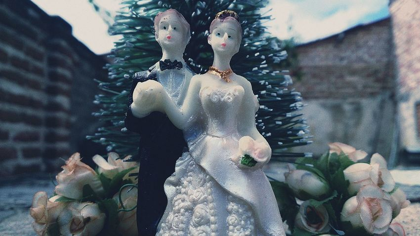 Taking Photos Check This Out Simple Photography Husbend Toys Flower Simplicity Wife Noivos Perspective