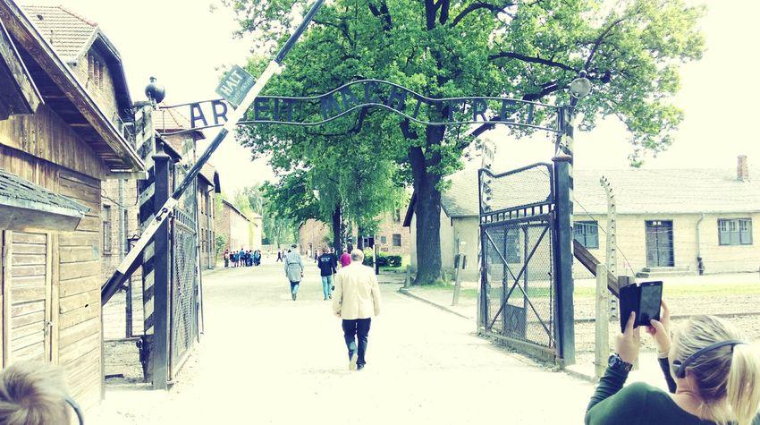 Arbeit Macht Frei Silence Is A War Crime Konzentrationslager Auschwitz Ww2 Poland