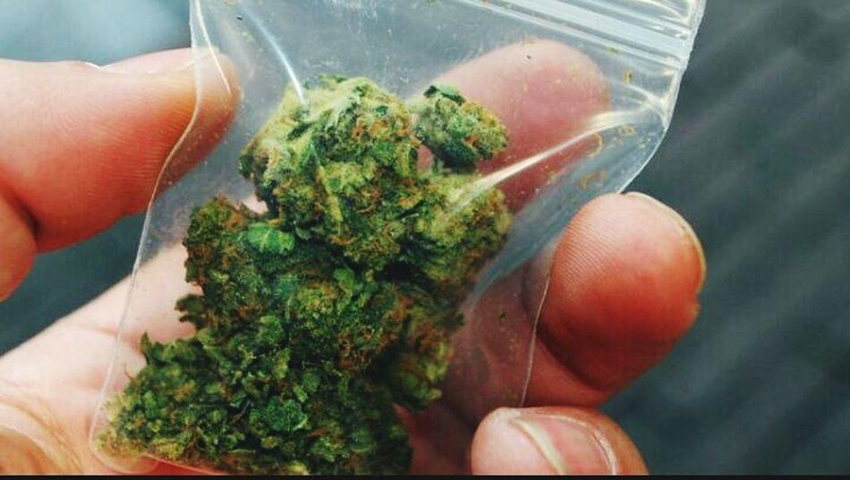 Weedtime Weed <3 Weed Weeds Canabis Science First Eyeem Photo