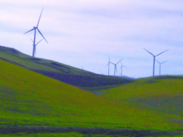 Green Hillside Wind Turbines Wind Turbines On A Field