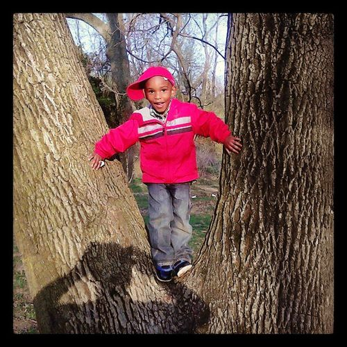 Darius chilln ina tree....