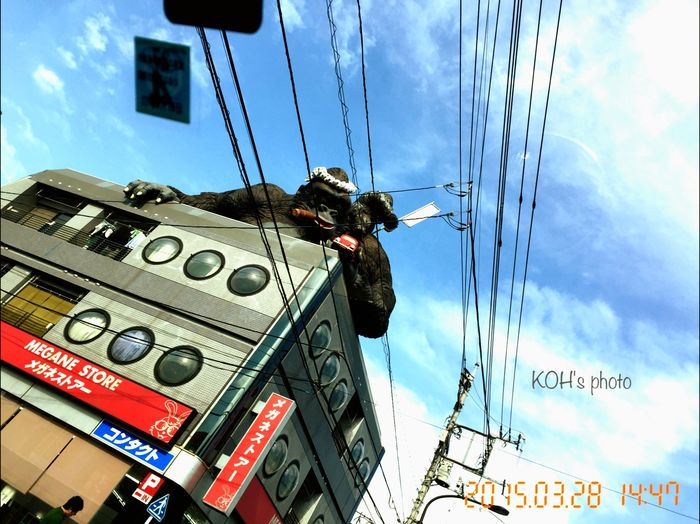 Setagaya Ave. Streetphotography Street Photography