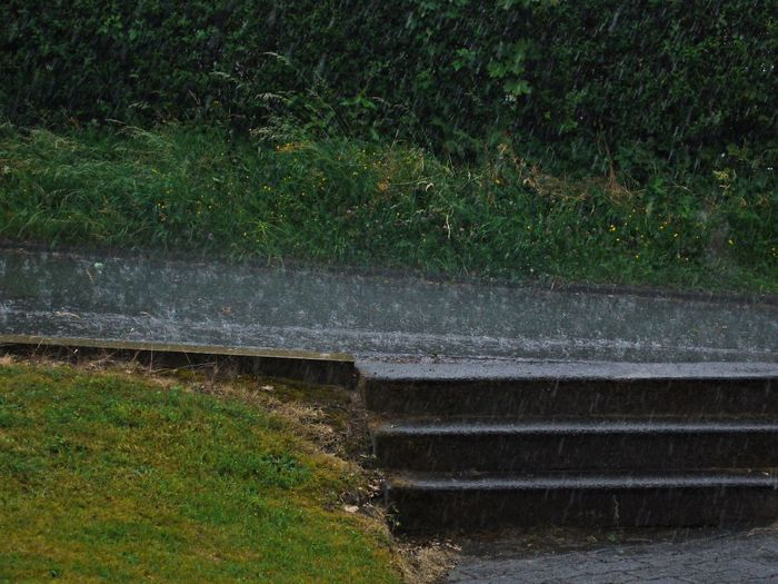 Architecture Bad Weather Day Grass Green Color Hard Rain Nature No People Outdoors Rainy Day Steps Street Water