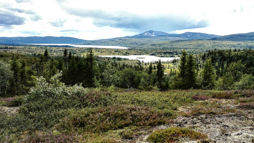 Mountains. As breath taking as always. Mountain View Nature Panorama Silence Of Nature Tranquility Swedish Nature Jamtland