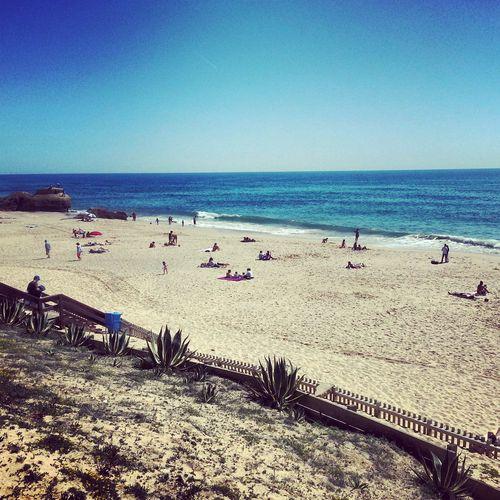 Enjoying Life At The Beach Beach Day Sunny Day