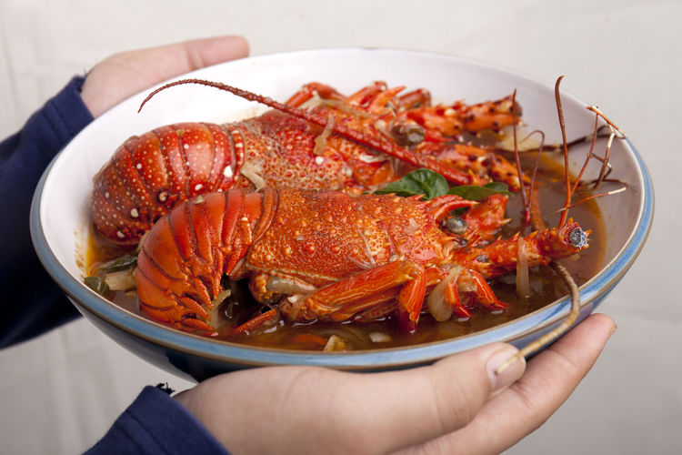 Lobster Served Spicy Cholesterol Close-up Food Food And Drink Freshness Healthy Eating High Angle View Holding Human Body Part Human Hand Plate Ready-to-eat Real People Seafood