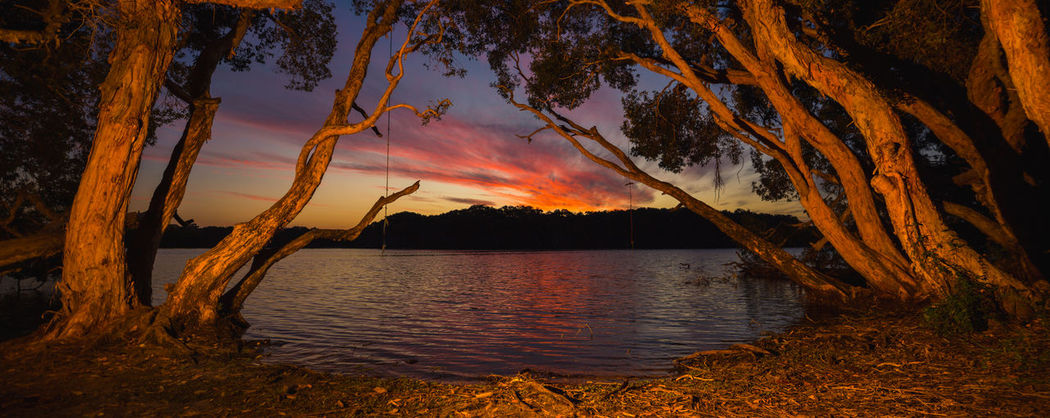 Camping Dark Moody Sky Nature Panoramic Red Tree Twilight Beauty In Nature Candlelight Dusk Heat - Temperature Lake Multi Colored Night Orange Color Park - Man Made Space Recreational Pursuit Scenics Softness Sunset Tranquil Scene Tranquil Scene Nature Vibrant Color Water