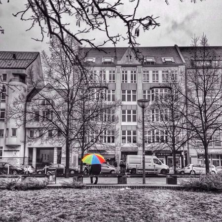 Berlin Myberlin Rainy Days Cloudy Blackandwhite Photography Blackandwhite Bnw Streetphoto_bw Colorful Umbrella Taking Photos People Watching Streetphotography Street Lamps Park Bench Comesitwithme The Street Photographer - 2016 EyeEm Awards Breathing Space