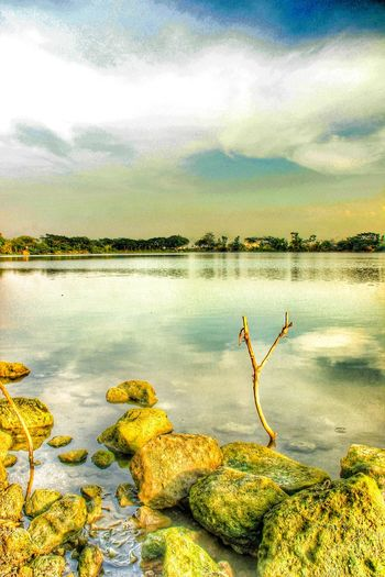 Sebuah telaga di gresik Lovely Weather Hello World Landscape #Nature #photography Landscape