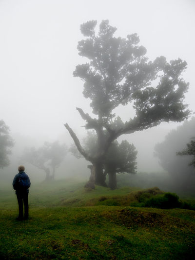 Rear view of man on field against sky during foggy weather