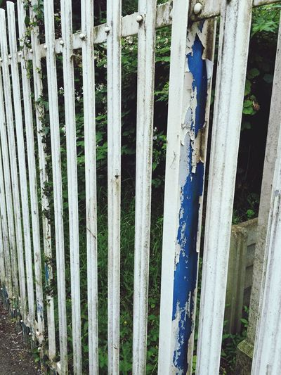 Dirty flaky paint railings Railings