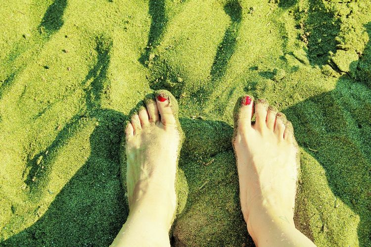 Barefoot Low Section Human Foot Human Leg Nail Polish High Angle View Red Nail Polish Human Body Part One Person Day Beach Women Personal Perspective Leisure Activity Real People Sand Outdoors Shadow Lifestyles Vacations Greensandbeach Hawaii Peridot The Week On EyeEm