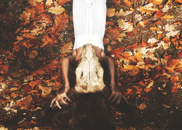 High Angle View Of Woman Holding Skull While Lying On Fallen Dry Leaves
