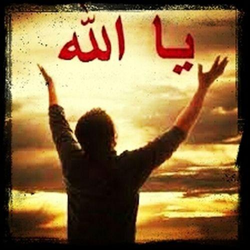 ( انا جعلناكم شعوبا وقبائل لتعارفوا أن اكرمكم عند الله أتقاكم)