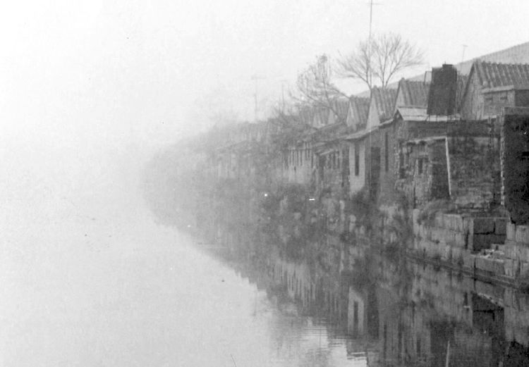 A scene in Beijing, China in the late 80's. This is a very ancient houses behind the Forbidden City of China. Happy Morning Beautiful Morning Beijing Forbidden City Misty Misty Morning Film Photography Beijing Scenes Black And White Monochrome Extreme Weather Foggy Cold