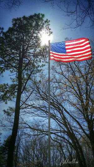 Portrait Of America Tribute Veteran Burial America Pride Hello World American Flag Madlovphotos Madlovphotography
