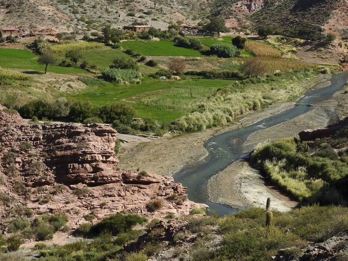 Valle en Palermo, Salta Maiz Rio Beauty In Nature Calchaquies Humildad Humildade Nature Scenics - Nature Sembrados Tranquil Scene Tranquility Valle Valley