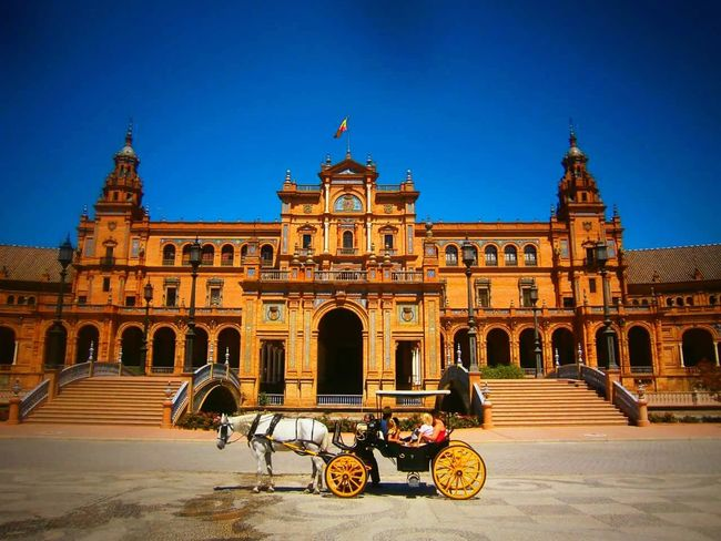 Sevilla Colors SPAIN Spain♥ Horse Old Buildings Sevilla tiene un color especial! Popular Taking Photos Eyemphotography City