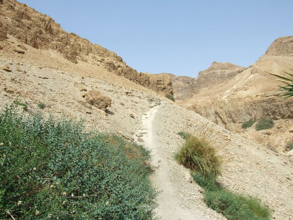 Judean Desert Path In Nature Rock Formation Nature Cliffs Beauty In Nature Clear Sky Mountain Landscape Footpath Arid Climate Mountain Range En Gedi EyeEmNewHere EyeEm Nature Lover