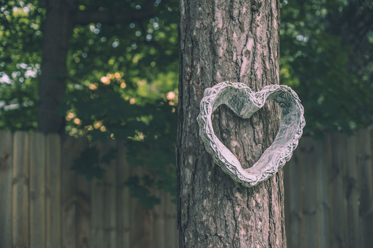 Carving Close-up Day Design Emotion Focus On Foreground Heart Shape Love Nature No People Outdoors Park Plant Positive Emotion Shape Textured  Tree Tree Trunk Trunk Valentine's Day - Holiday Wood - Material