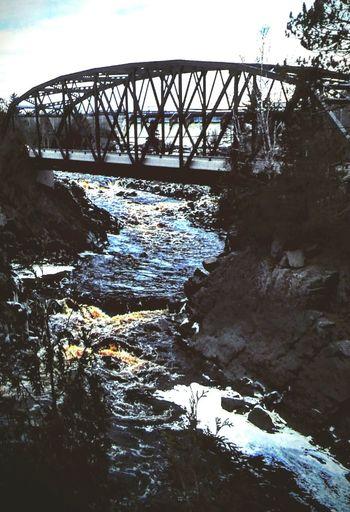 Undre the bridge. Enjoying Life