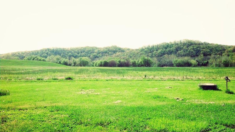 Bearbranch Indiana Free Land USA