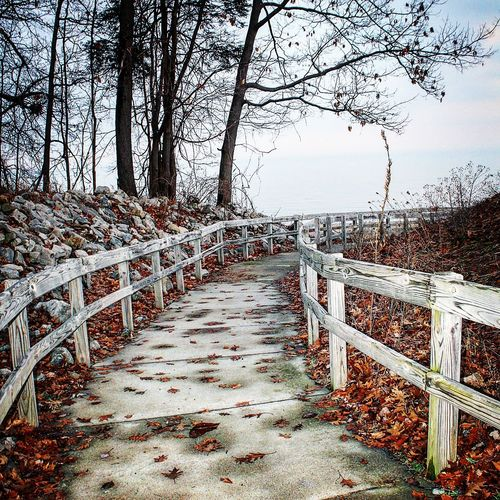 What around the bend🤔 Fence Railing No People Outdoors Day Nature Sky Tree Horizon Over Water Scenics Tranquility Beauty In Nature Water Beach Winter Lake Perfection Cold Temperature