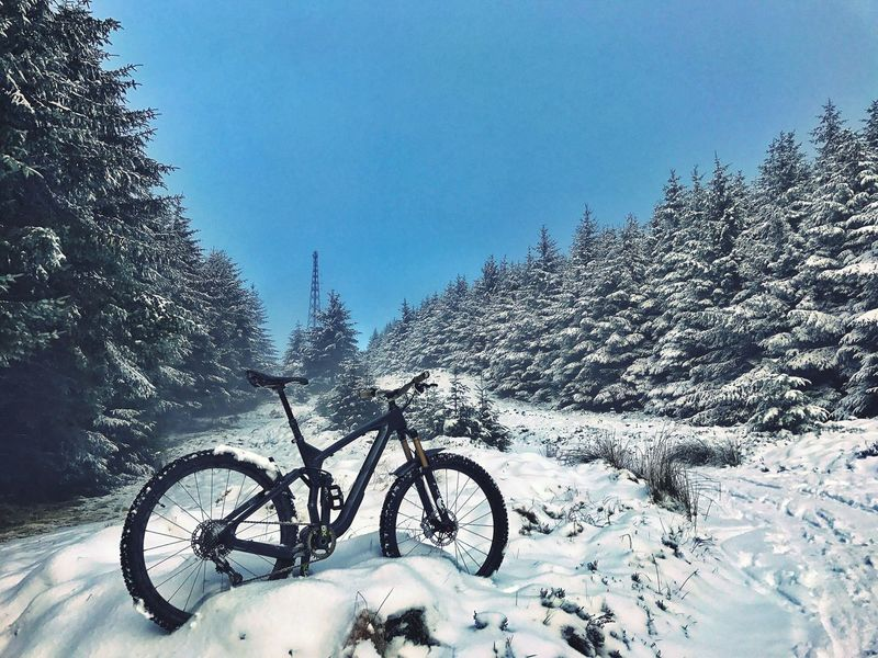 Winter wonderland. Snow Nature Winter Outdoors Beauty In Nature Mtbpassion MTB Biking Mtblife Enduromtb MTB ADVENTURE Mountain Bike Riding Forest Scenery Beauty In Nature Scotland