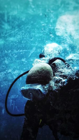 Sea Swimming Sea Life Scuba Diving Close-up Outdoors UnderSea Underwater Water Beauty In Nature غوص جده Jeddah