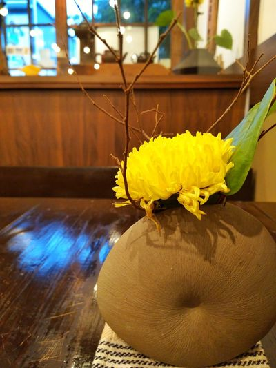 Chrysanthemum Yellow flower on the table with circle vase Japanese zen style furniture Wabichateahouse Flower No People Fragility Yellow Close-up Indoors  Day Flower Head Freshness Nature First Eyeem Photo Warm Day Coffee And Sweets Vintage Style Brown Color Building Exterior Architecture Postcode Postcards Beauty In Nature Growth Nature