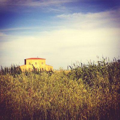 Shining mystery Solitude Peacefulness Landscape Tuscany Italy
