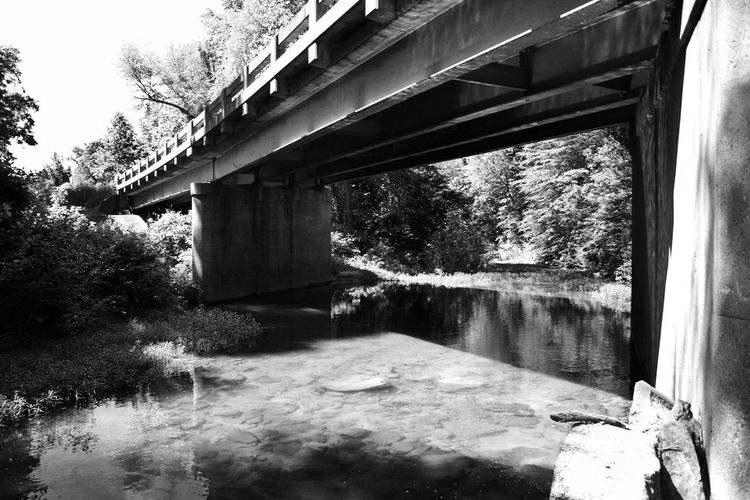 Long Branch Creek at Goat Island Road Blackandwhite Bw_collection EyeEm Best Shots Rural Fragments