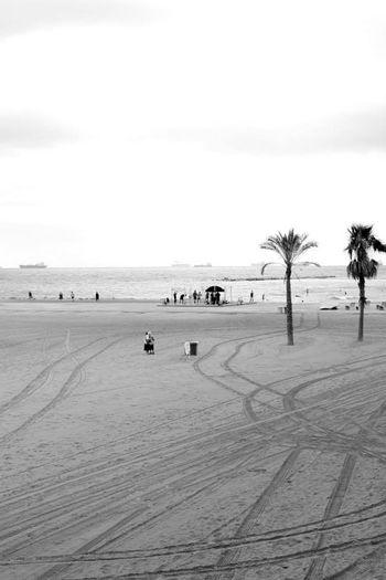 Barcelona Beachlines Sand