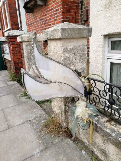 Brighton innit Fairy Wings Queer Found Objects Art Found Object Gaybrighton Fairy Wings Abandoned Left Behind Debris So Gay Faglove Discarded Worn Out Weathered