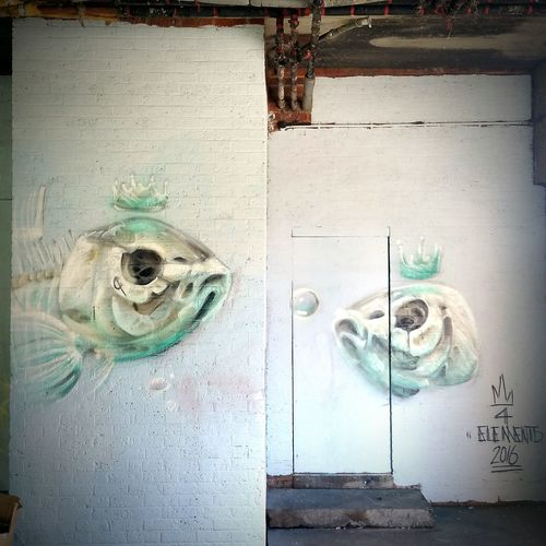 Urban Art Graffiti Fish Grimsby