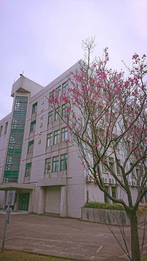 University Sky