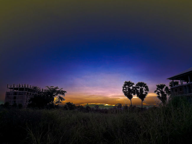 Sunset No People Outdoors Field Nature Tree Sky Dawn Night Beauty In Nature