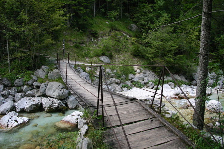 River Soča, Slovenia Beauty In Nature Bridge - Man Made Structure Clear Water Footbridge Forest Landscape Nature No People Outdoors River Scenics Tranquil Scene Tranquility Travel Destinations Tree Water